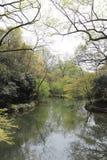 风景在西湖,杭州,中国03 免版税图库摄影