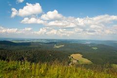 风景在费尔德伯格德国在黑森林里。 免版税库存照片