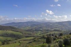 风景在Chianti 免版税图库摄影
