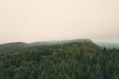 风景在Gaspésie 免版税库存图片