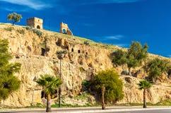 风景在Marinid坟茔下的Fes,摩洛哥 库存图片