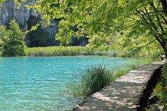 风景在Plitvice湖 免版税库存图片