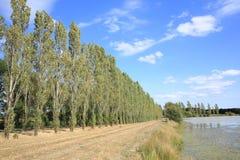 风景在Poitou-Charentes,法国 库存照片
