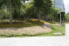 风景城市深圳设计街市  免版税库存图片