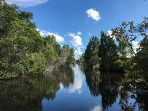 风景大厅河 库存照片