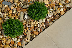 风景室外庭院设计 图库摄影