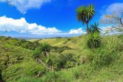 风景小山的看法 库存照片
