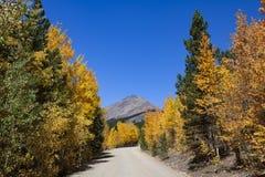 风景山驱动通过与山的白杨木 免版税库存图片