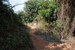 风景岩石道路在Babu谷& x28的一个晴天; Weid Babu& x29; Zurrieq,马耳他 美丽如画的华美的场面 库存图片