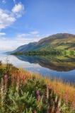 风景惊人的横向山的本质 免版税库存图片