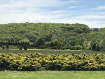 风景新泽西北部 免版税库存照片