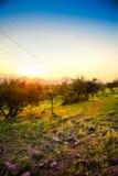 风景智利 免版税库存图片