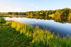 风景森林和湖的水 免版税图库摄影