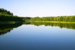 风景森林的河 库存图片