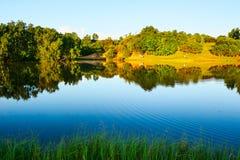 风景森林的湖边 库存图片