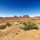风景沙漠的场面 库存照片