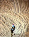 风景沙漠 库存照片