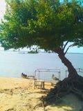 风景河奥里诺科河BolÃvar委内瑞拉 免版税库存照片