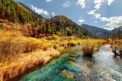 风景河用在秋天森林和山中的水晶水 免版税库存图片