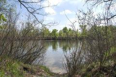 风景河,干燥,绿色灌木 库存照片