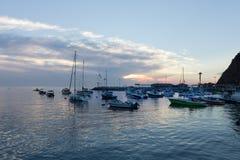 风景海洋,海岛日出,风船,游艇,渔船海湾视图在卡塔利娜海岛港口,加利福尼亚 库存图片