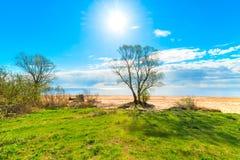 风景温暖的晴天 库存照片