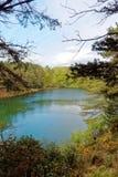 风景湖和森林地蓝色水池的,多西特,英国 免版税库存照片