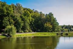 风景湖在夏天公园 免版税库存图片