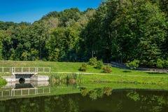 风景湖在夏天公园 免版税库存照片