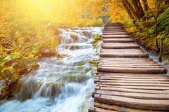 风景瀑布和木道路-美丽如画的秋天 免版税库存照片