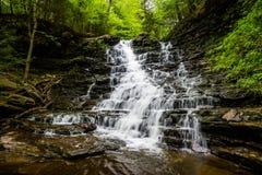 风景瀑布在里基茨幽谷Poconos的国家公园在P 免版税库存照片