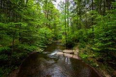 风景瀑布在里基茨幽谷Poconos的国家公园在P 库存图片