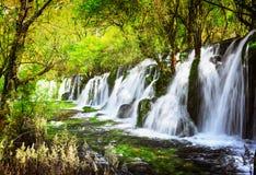 风景瀑布用在绿色森林中的透明的水 库存图片