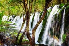 风景瀑布用在绿色森林中的透明的水 免版税库存照片