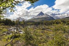 风景火地群岛巴塔哥尼亚阿根廷 免版税库存照片