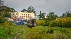 风景火车在大叻,越南 免版税图库摄影