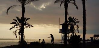 风景照片与海的在背景中 免版税库存图片