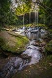 风景照片,美丽的雨林瀑布在Phu Kradueng国家公园的深森林里 库存照片