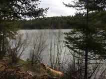 风景由湖的山供徒步旅行的小道 库存照片
