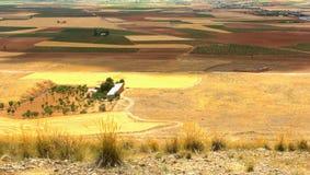 风景的全景视图在卡斯提尔la Mancha,西班牙的 库存照片
