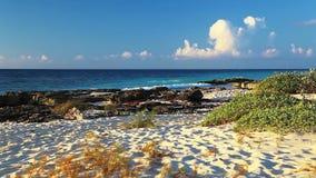 风景的海滩 股票录像