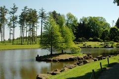 风景的湖 免版税库存照片