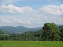 风景的看法 免版税库存照片