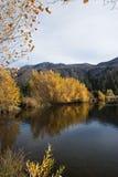 风景的秋天 免版税库存图片