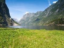 风景的naeroyfjord 库存照片