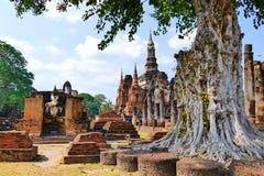 风景看法古老佛教寺庙废墟和Wat Mahathat在Sukhothai历史公园,泰国菩萨雕象  库存图片