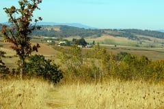 风景看法在俄勒冈 库存照片