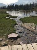 风景看法在冰川国家公园 免版税库存照片