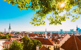 风景看法风景耶路撒冷旧城镇塔林,爱沙尼亚 免版税库存照片