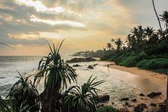 风景看法,单独走在海滩在斯里兰卡的日落期间 免版税库存照片